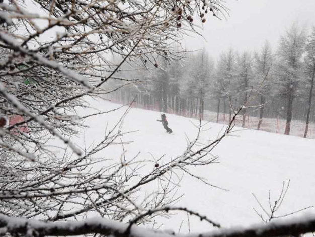 Snowfall hits Chongli in China's Hebei