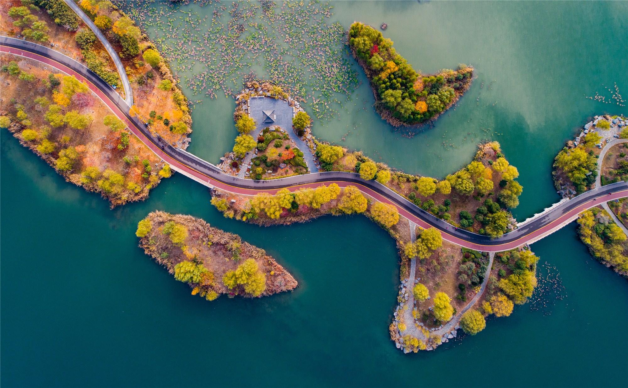 Ecological restoration achievements along the Yangtze River Economic Belt