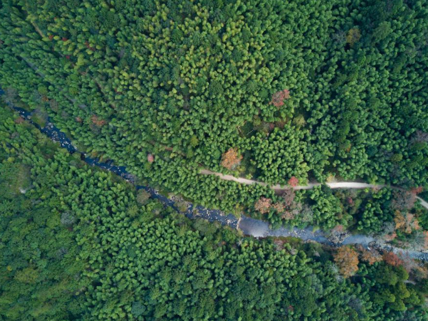 Scenery of Longqi Mountain National Nature Reserve in Fujian