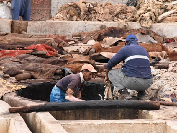 In pics: tannery in Morocco's Marrakech