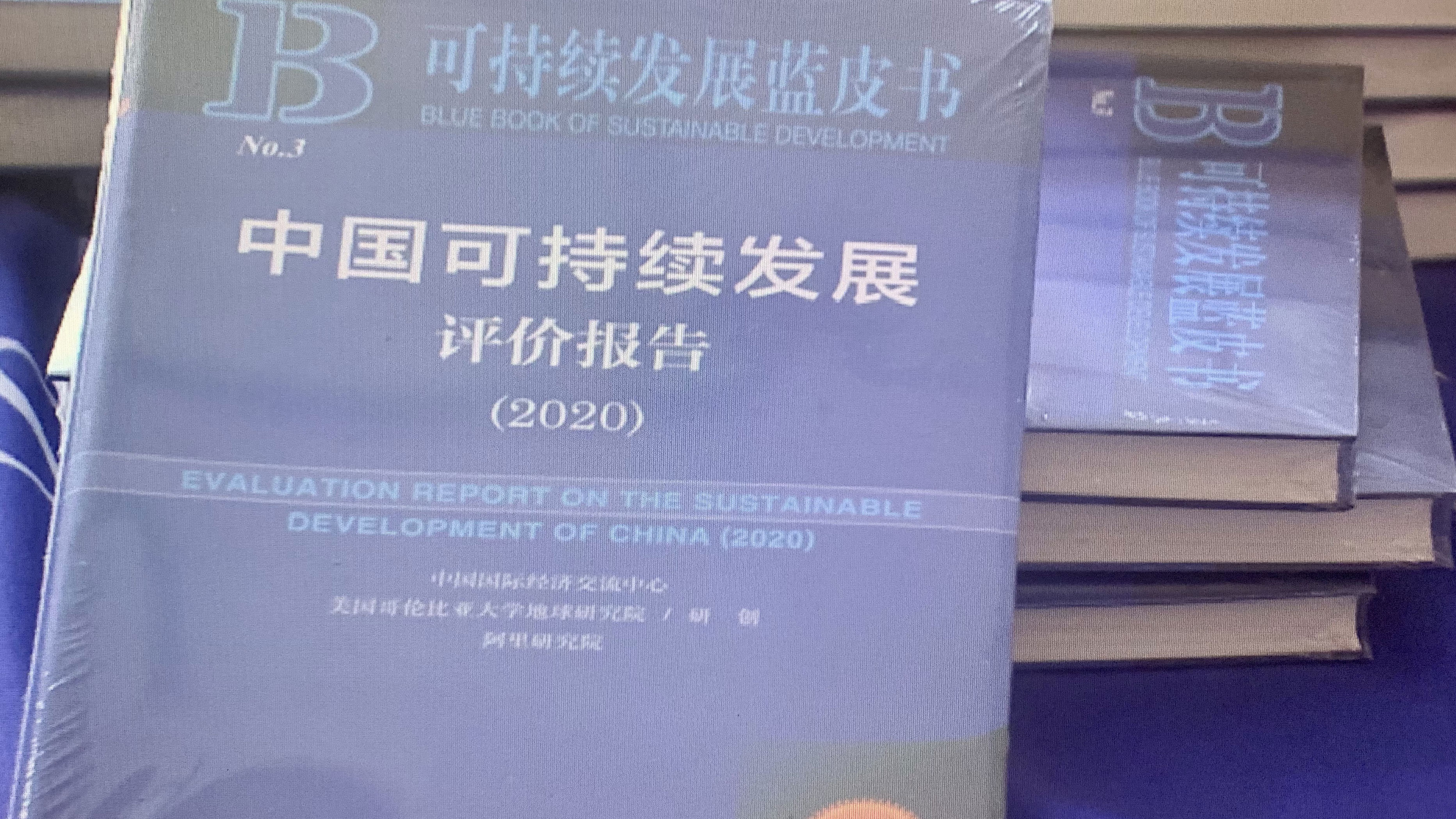 Report on China's development point to successes and challenges ahead
