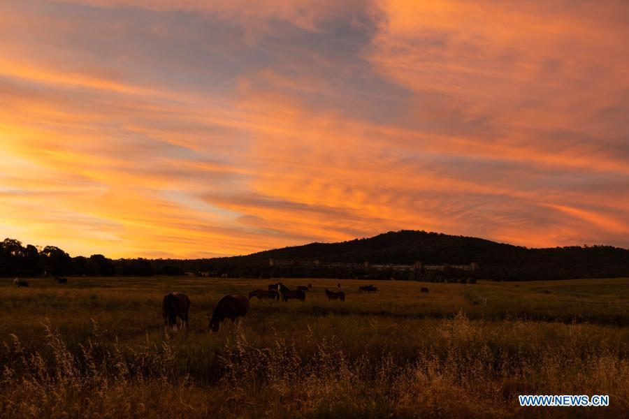 In pics: sunset glow in Canberra, Australia