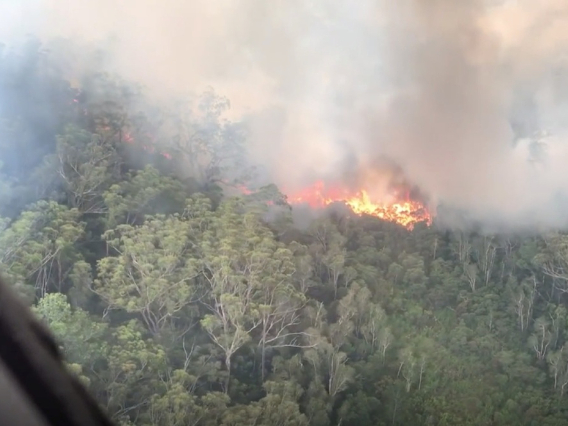 Bushfire continues to rampage across Australia's world heritage island