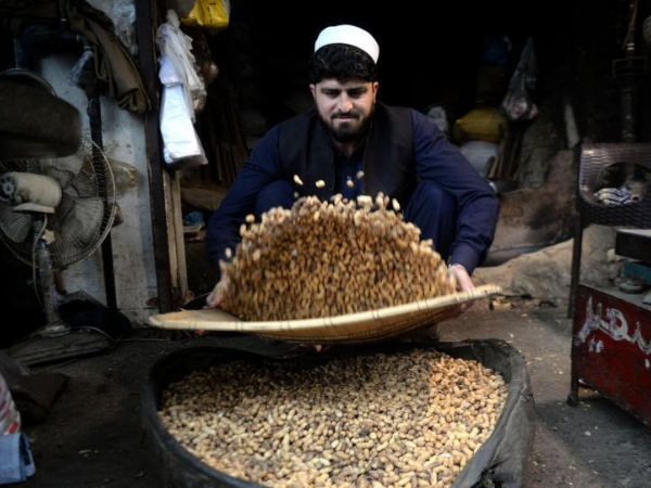 Peanuts popular among Pakistani people in winter