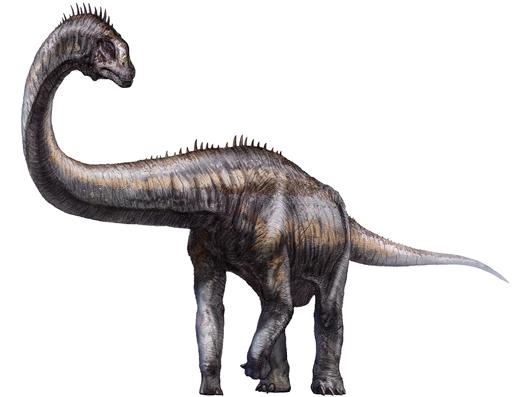 Scientists discover dinosaur footprints in Tibet