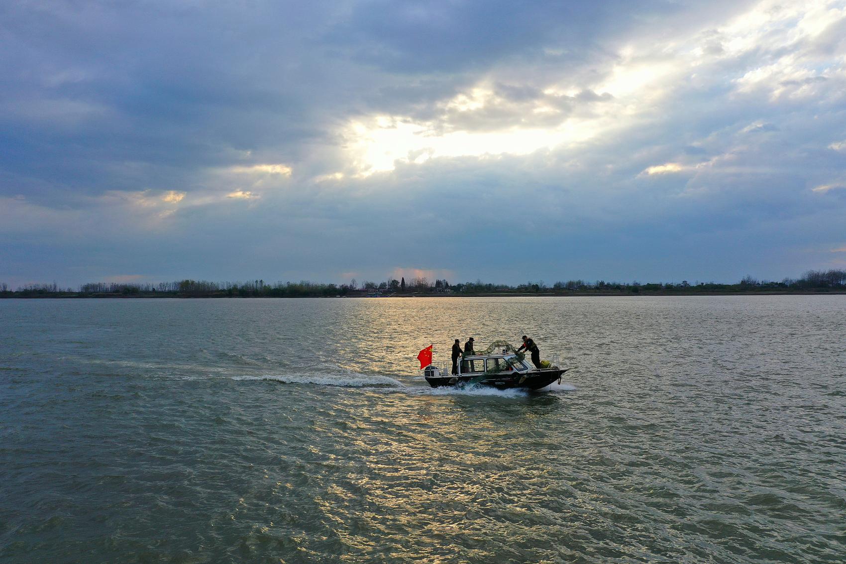 Yangtze River fishing ban sees notable progress