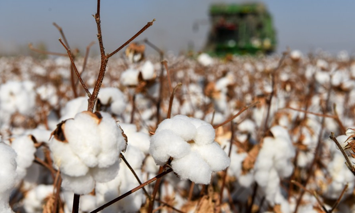 Conclusion before evidence: Zenz's 'forced' Xinjiang cotton labor lies studded with data mistakes