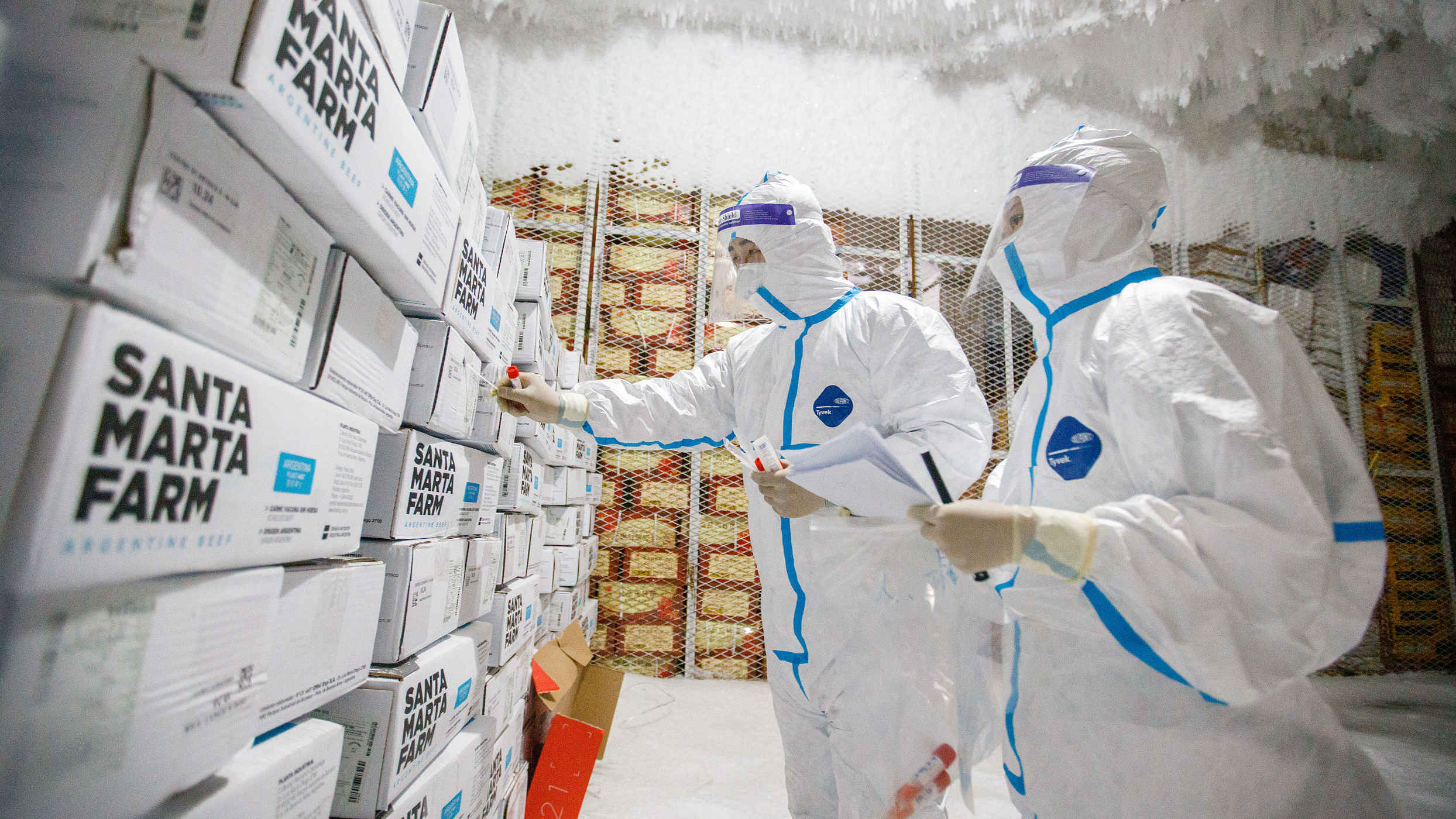 Shenyang finds coronavirus on imported fish packaging