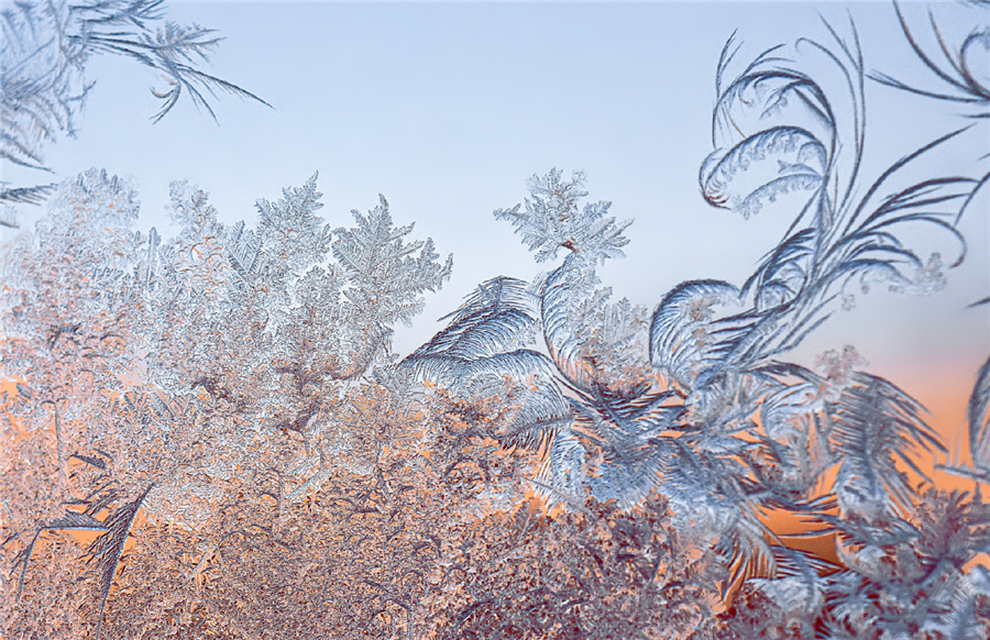 Photographer finds icy beauty up close