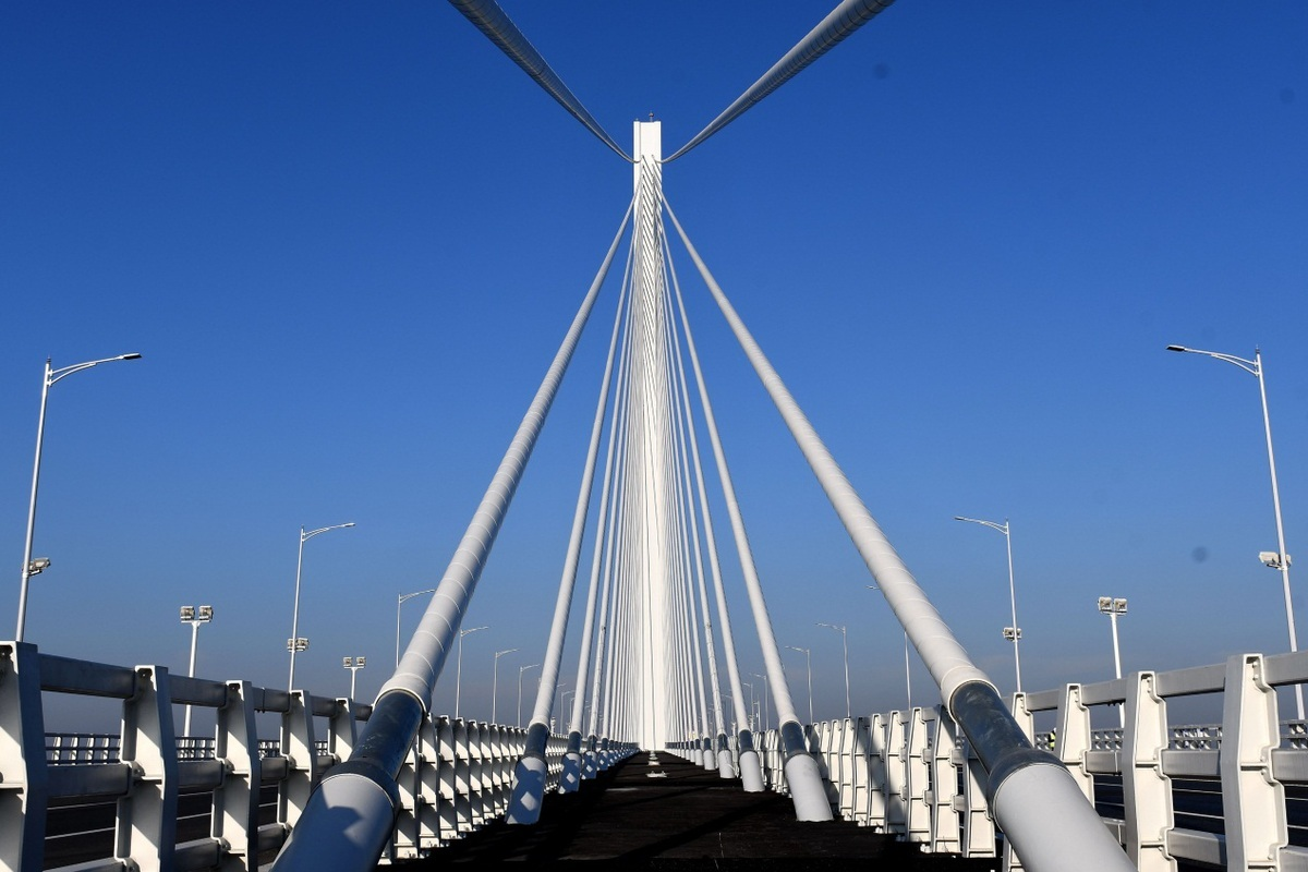 Fifth Nanjing Yangtze River Bridge officially opens to traffic