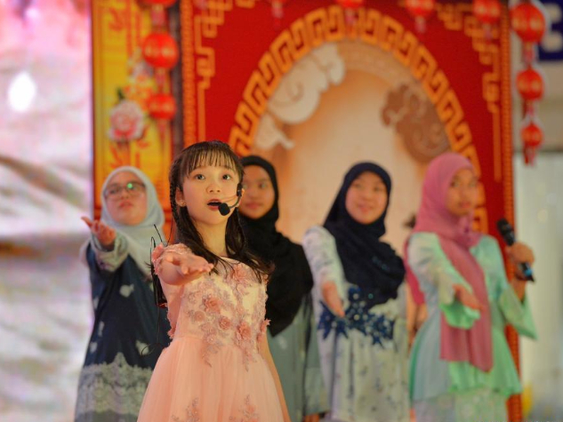 Brunei launches Chinese cultural carnival to promote exchanges