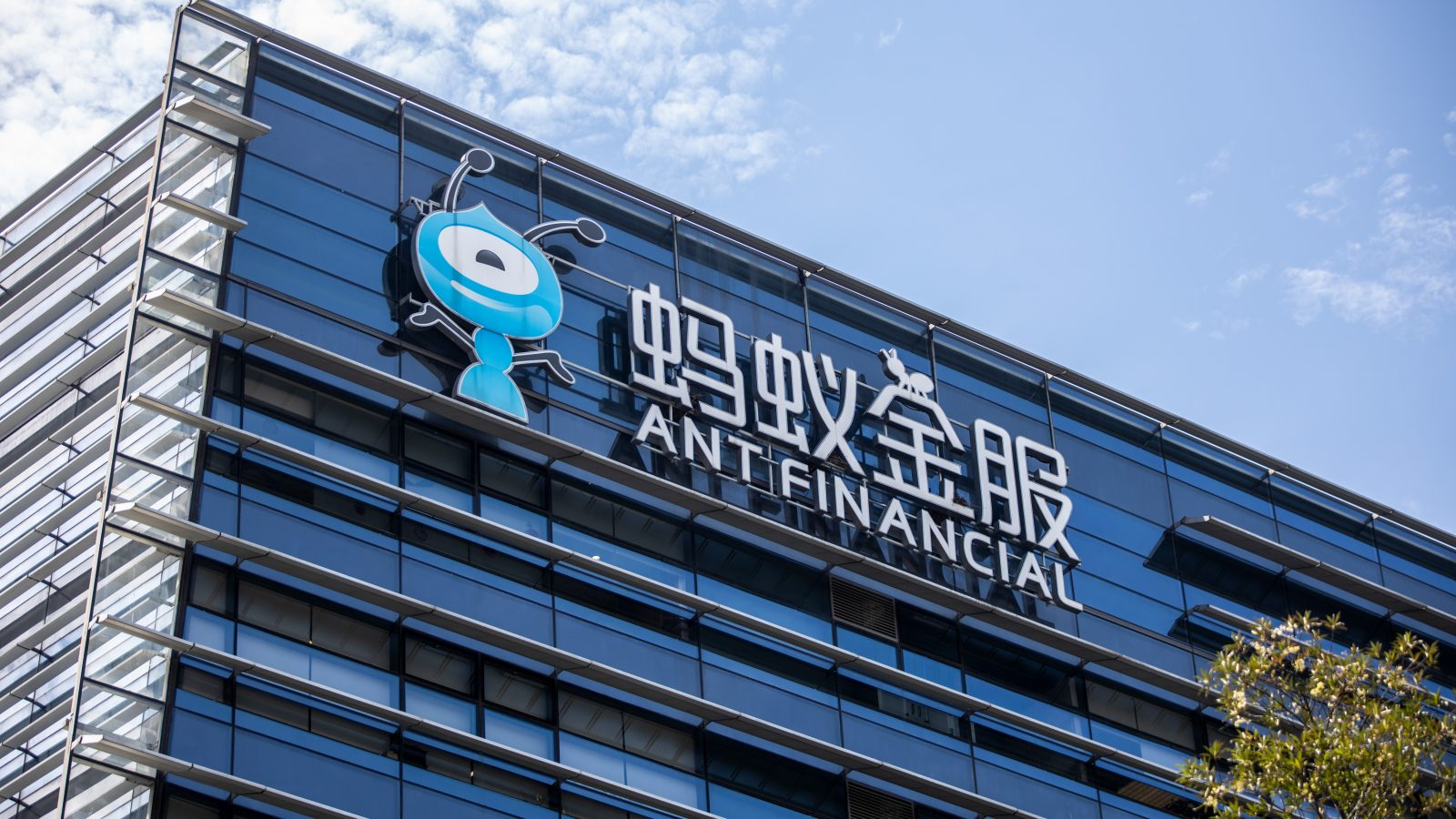 Fintech firm urged to rectify its operations