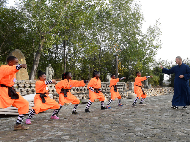 Shaolin Temple, university join hands to start kung fu courses for int'l students