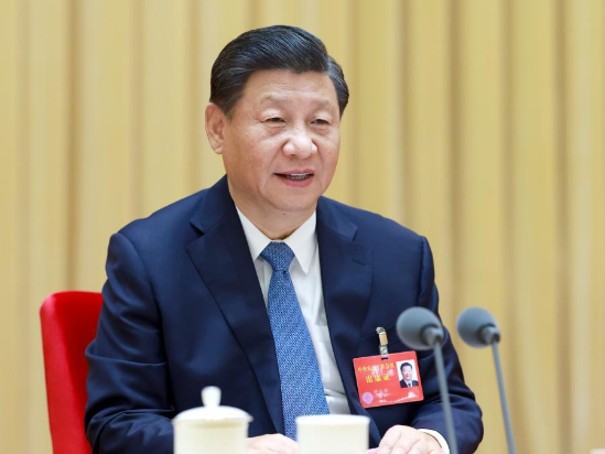 Xi stresses agriculture, rural areas, farmers as top priority for CPC