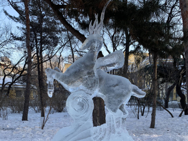 Student ice sculpture contest wraps up in Harbin