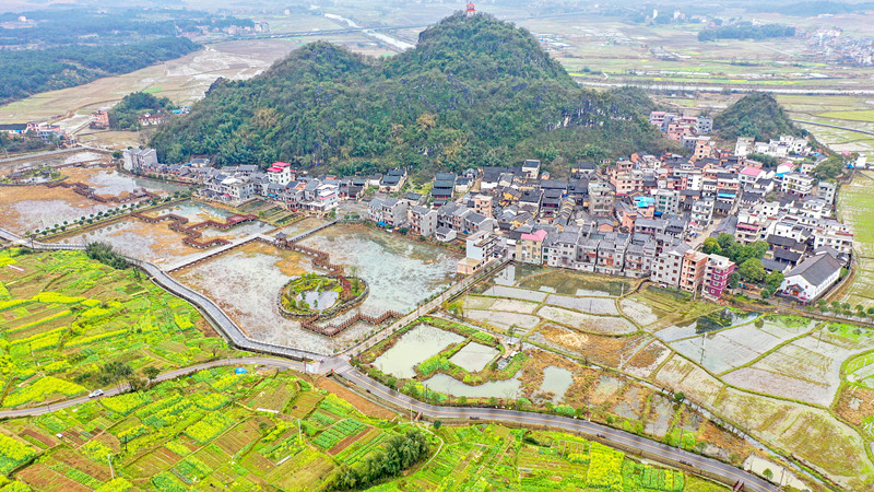 China to promote crop production, farmland protection in 2021