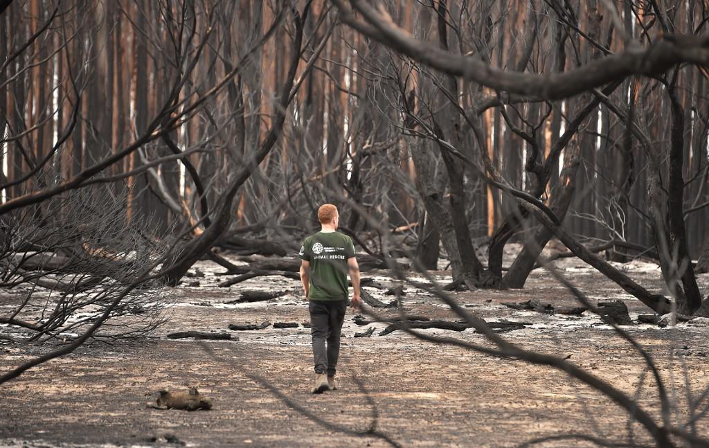 Bushfires threaten lives, homes in Western Australia