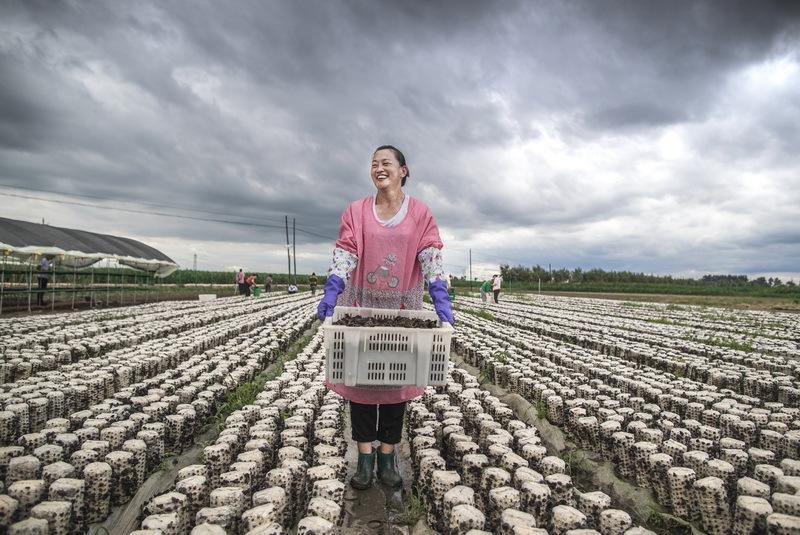 Award-winning photos show poverty reduction achievements in NE China's Jilin province