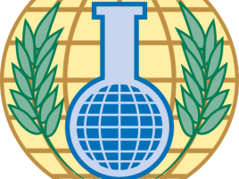 China appoints new permanent representative to OPCW