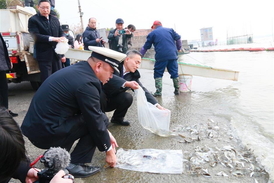Illegal fishing crackdown in city rivers
