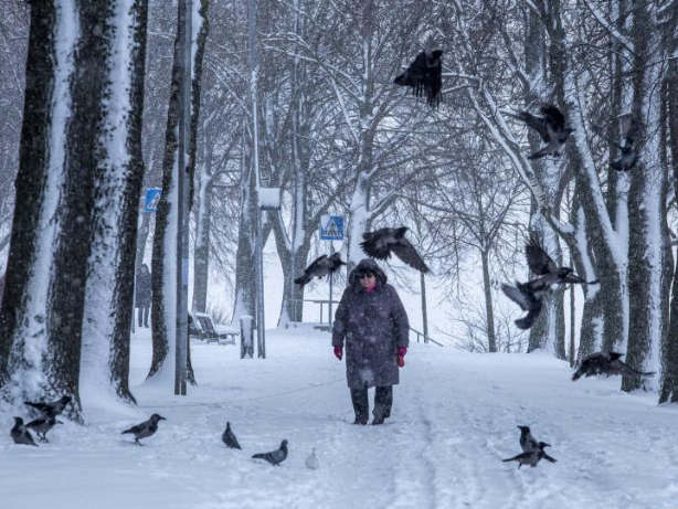 Severe weather warning issued in Latvia over prolonged snowfall
