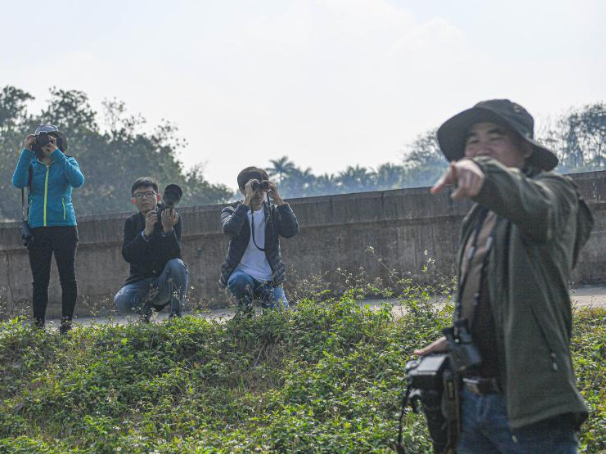 Across China: Swamps, surveys and endangered species: the barefoot bird-watchers of Hainan