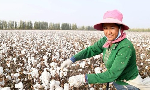 Cotton textile firms in Xinjiang aren't required to hire graduates from training centers: regional industry association