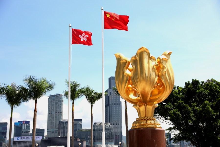 Security tops Hong Kong police's 2021 work agenda