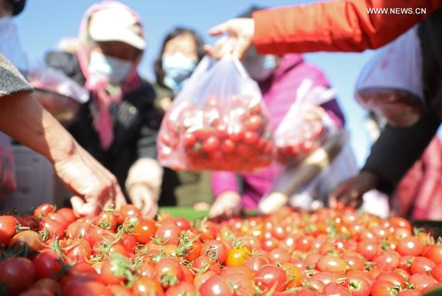 Traditional Spring Festival fair held in NE China's Liaoning