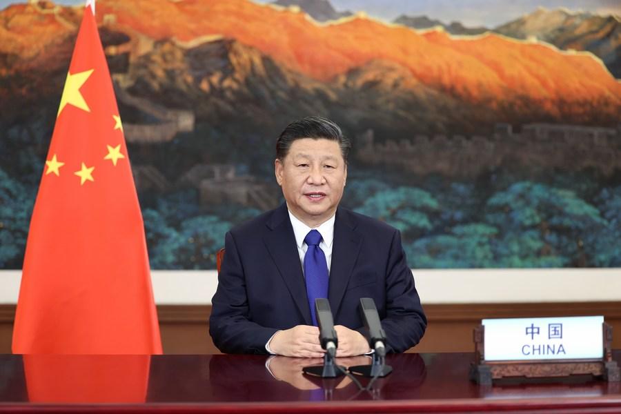President Xi chairs China-CEEC Summit