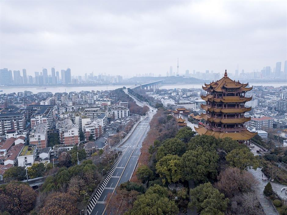No large cluster of COVID-19 in Wuhan before December 2019: WHO expert