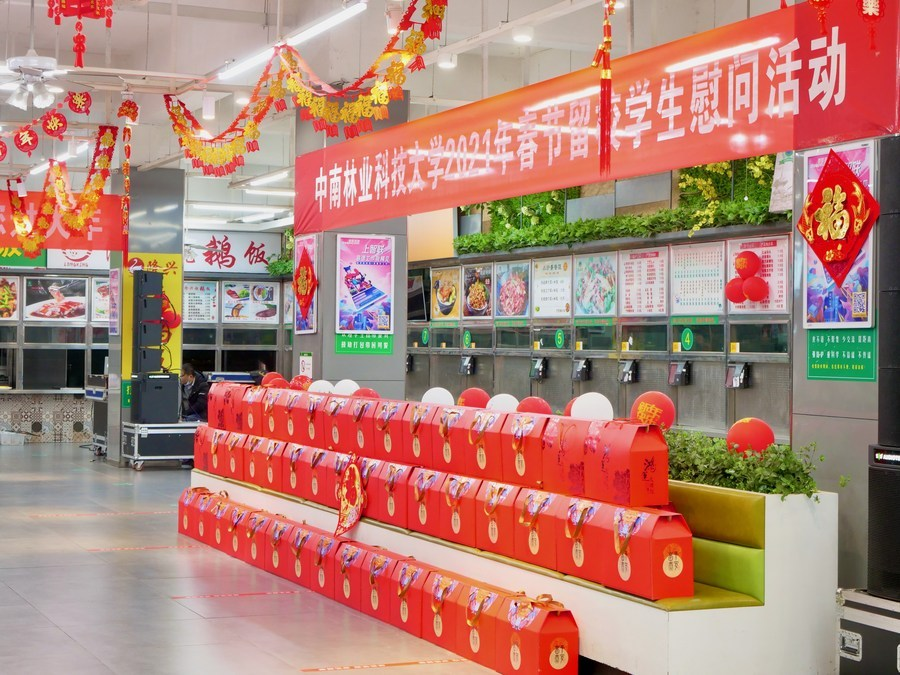 Chinese celebrate Spring Festival in new ways as millions stay put