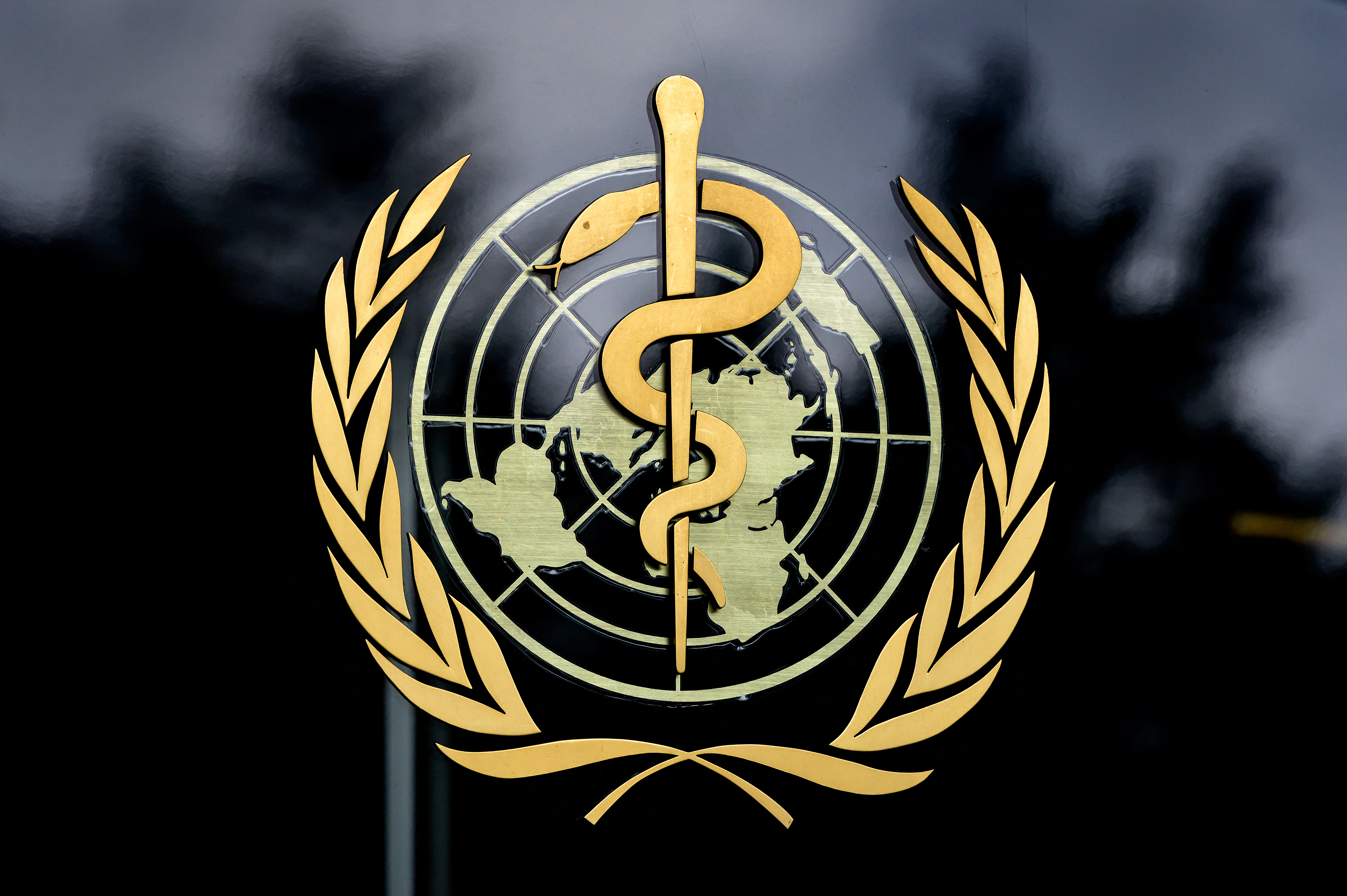 Two suspected Ebola cases in Guinea-Conakry: WHO chief
