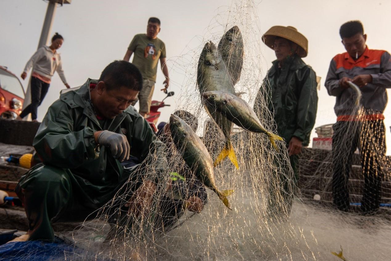 Fishermen begin to fish in S. China's Hainan