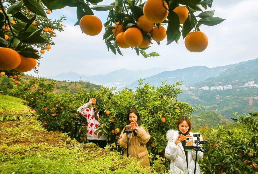 China makes tangible achievements in increasing people's incomes