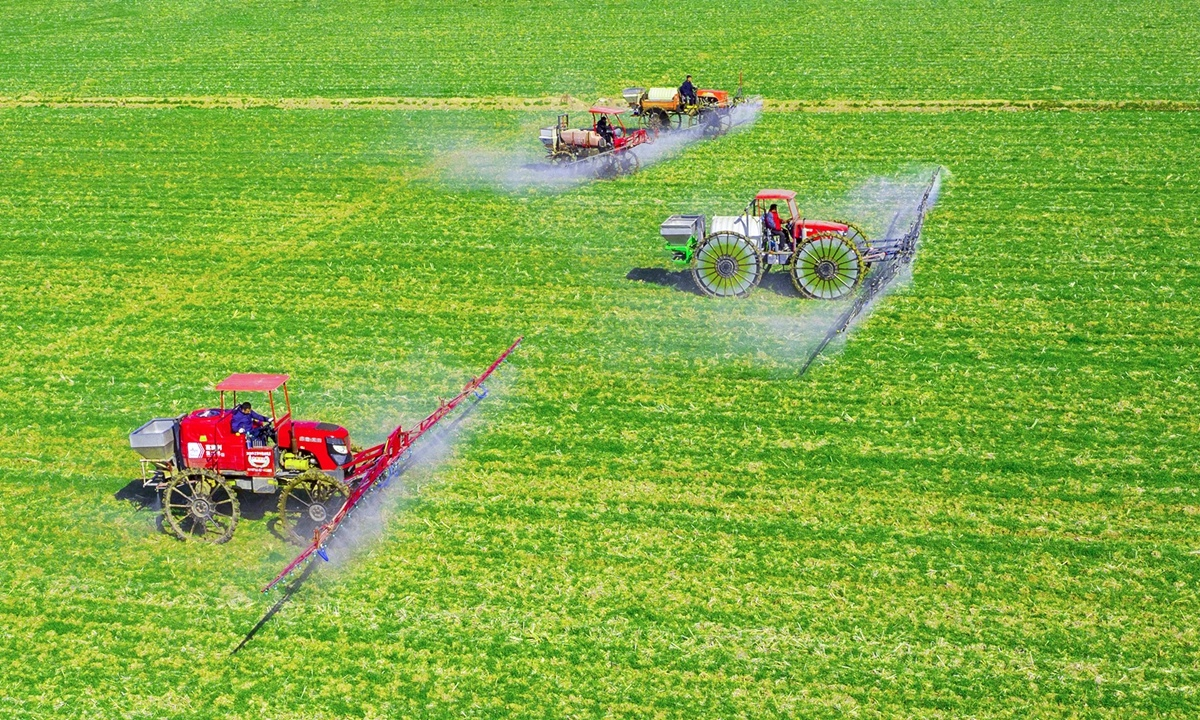 China to reinforce agricultural seed breeding to shore up national grain security