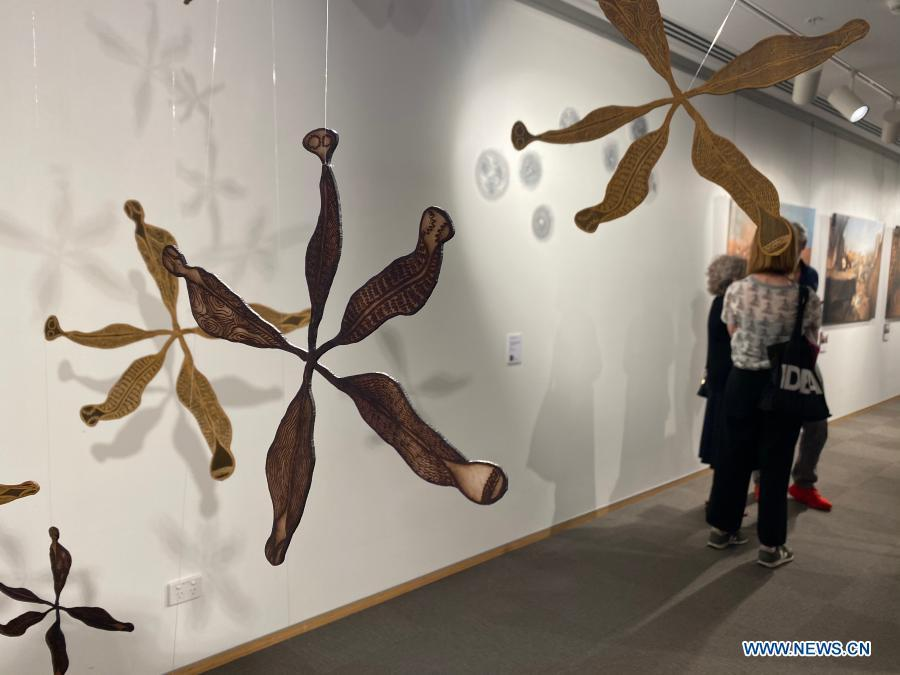 Art exhibition on nature, love illustrated by cross-cultural women unveiled in Sydney