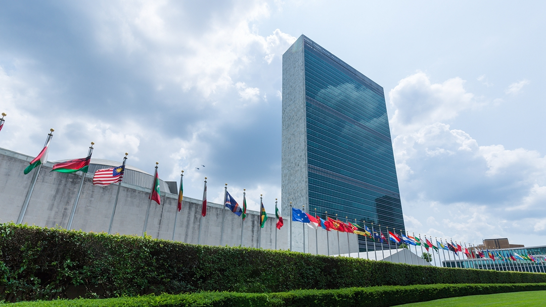 China says its vote in the UN belongs to the developing world