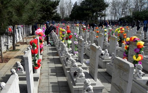 NPC deputy calls to restrain overly expensive cemeteries