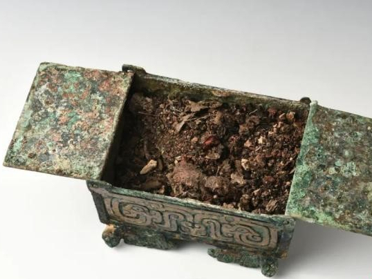 Residues of 2,700-year-old skin whitening cosmetics found in N China