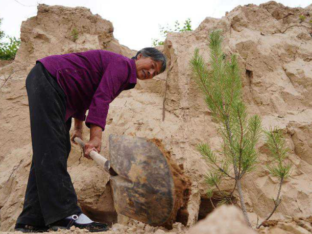 Green lands cover more areas of China with efforts of volunteers across China