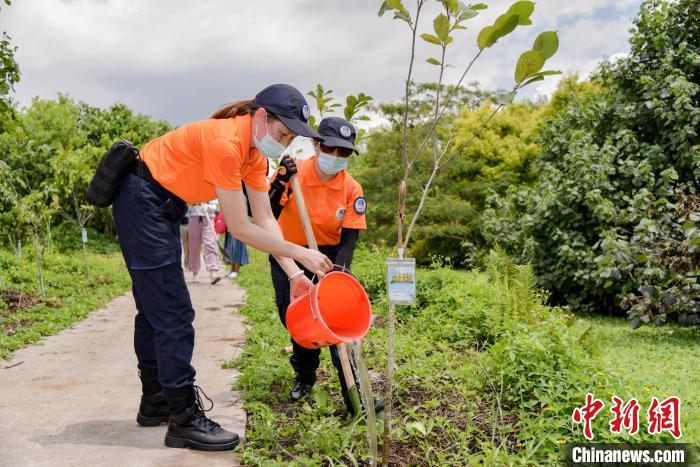 Tree-planting in full swing in S China's Guangdong province