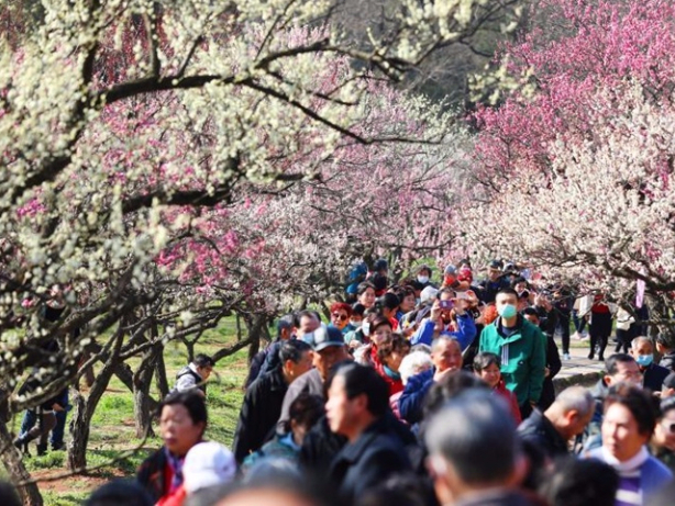 China's tourism, services sectors 'to see double-digit y-o-y growth'
