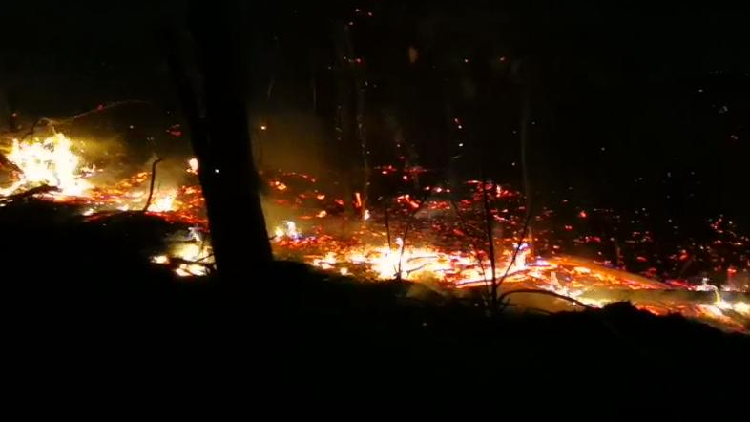 Firefighters battle forest fire in southwest China's Yunnan