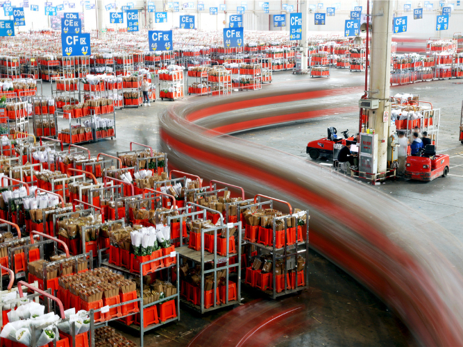 SW China's Yunnan sees soaring foreign trade in Jan - Feb