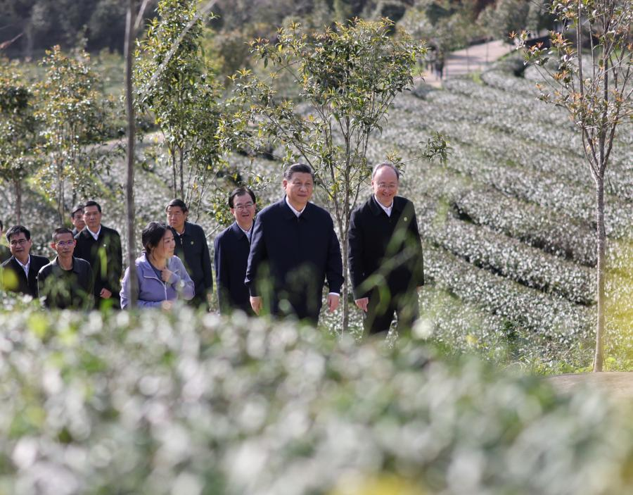 Key quotes from President Xi during his inspection of Fujian