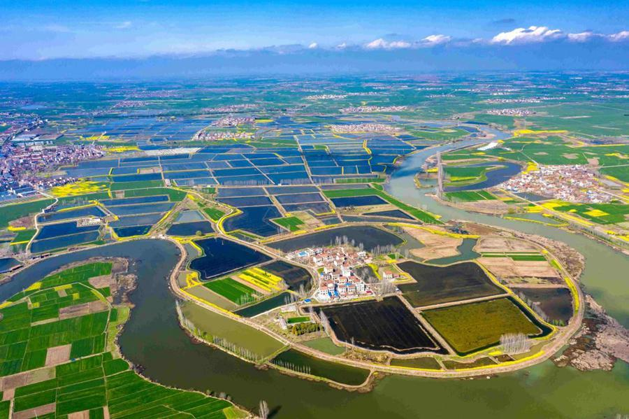Policies, technologies contribute big part to China's spring farming