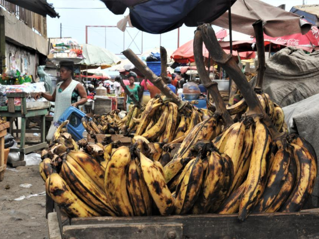 Feature: Roasted plantains, a traditional taste for Ghanaians