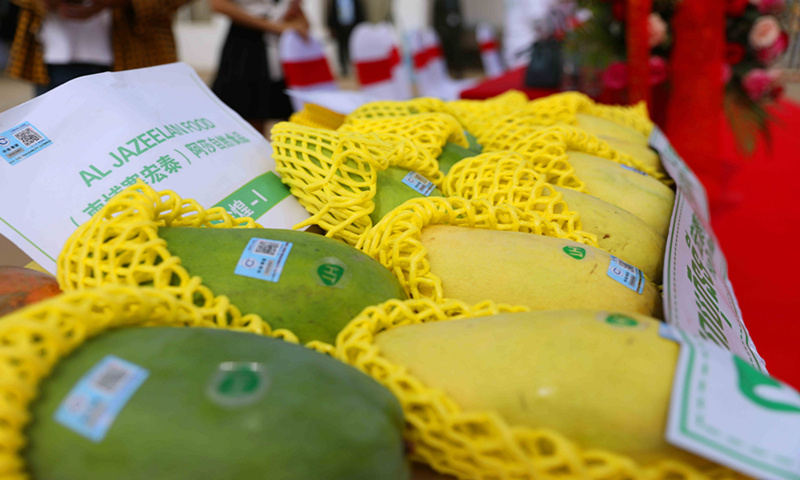 Fruit trade boom between China and BRI countries, supporting local economy