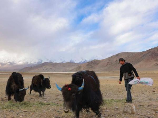 24-year-old herdsman takes mountaineering training on Muztagh Ata in Xinjiang